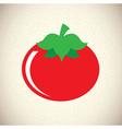 Tomato design vector