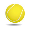 Yellow tennis ball vector