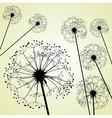 Dandelions pale green vector