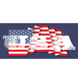 The inscriptions usa and flag of america vector