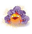 Violet pansies and chicken vector