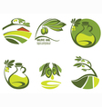 Olive oil and landscapes vector