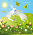 Rabbits are jumping on the meadow in the morning vector
