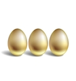 Gold egg concept unique golden eggs vector