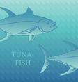 Fish tuna vector