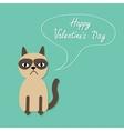 Cute sad grumpy siamese cat and speech bubble in vector