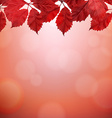 Autumn border with red leaves vector
