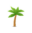 Tropical palm isolated on white vector