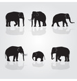 Set of shadow elephants eps10 vector