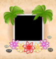 Photo frame with palm flowers sea pebbles vector