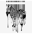 Abstract zebra silhouette vector