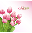 Beautiful flowers background with tulips vector
