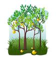 Juicy fruits in the apple garden vector