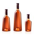 Cognac brandy vector