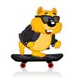 Hamster on a skateboard vector