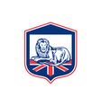 Lion lying british flag shield retro vector