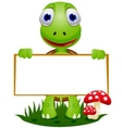 Turtle with sign vector