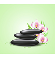 Orchids and spa stones vector