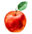 Apple logo design template fruit or food icon vector