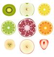 Fruit slice set vector