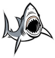 Shark with opened mouth vector