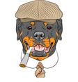 Hipster dog rottweiler breed vector