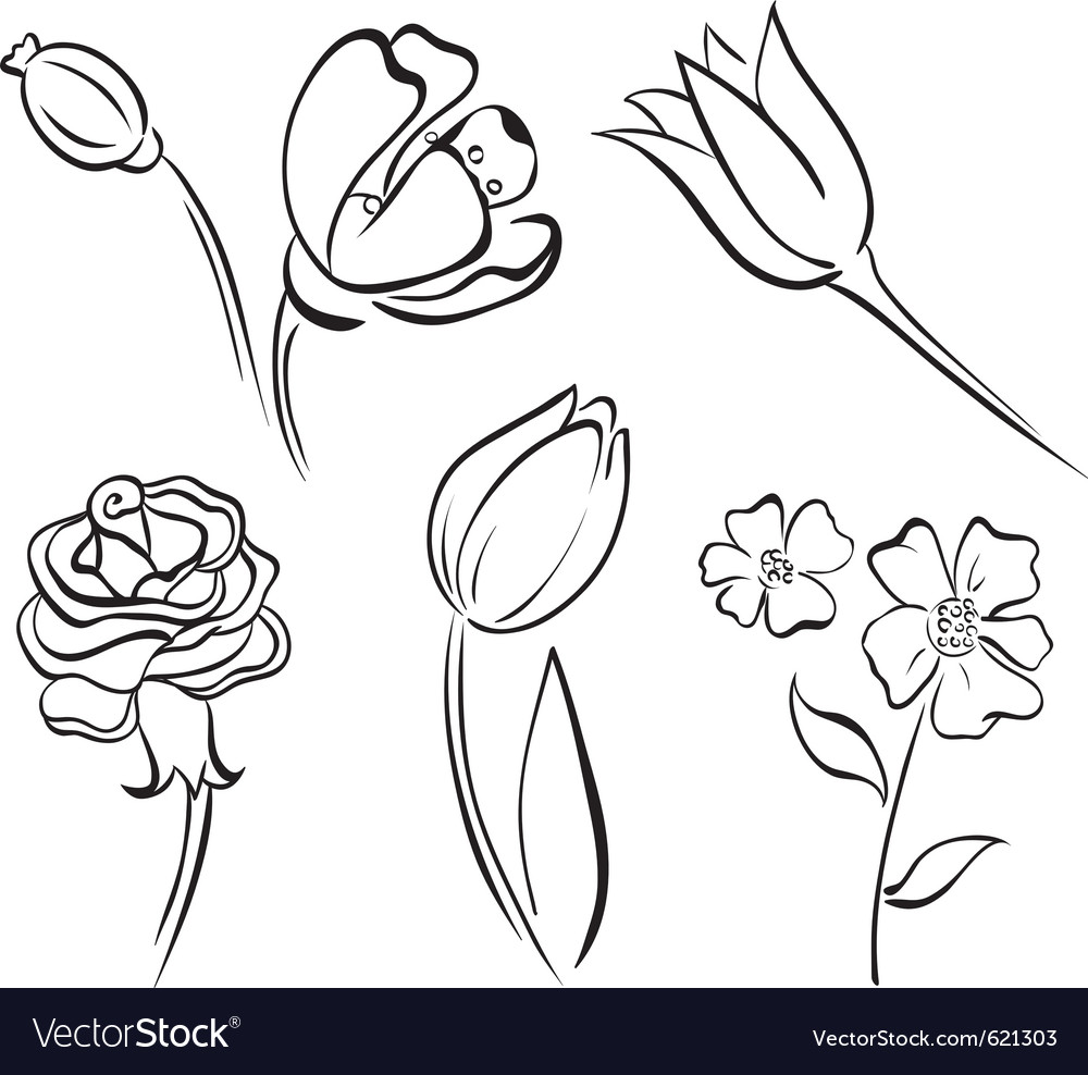 Flower art line vector | Price: 1 Credit (USD $1)