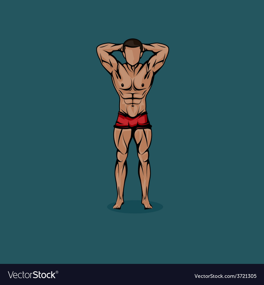 Muscled man body cartoon vector | Price: 1 Credit (USD $1)