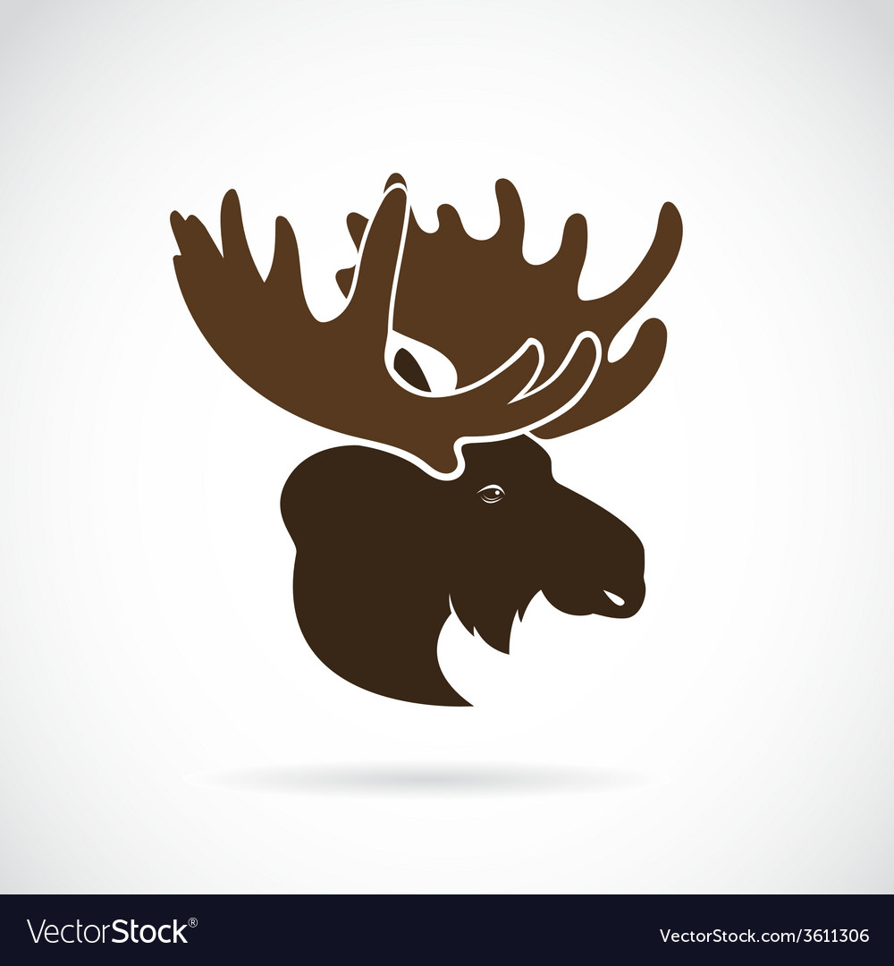 Images of moose deer head vector | Price: 1 Credit (USD $1)
