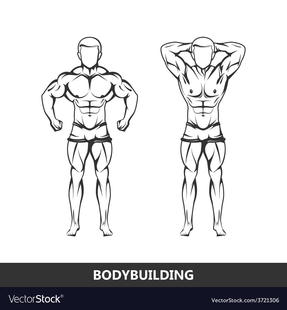 Muscled man body vector | Price: 1 Credit (USD $1)