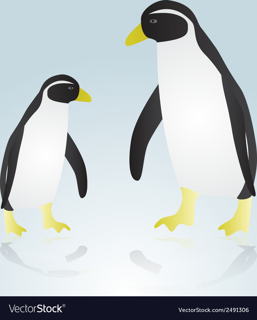 Two penguins eps10 vector | Price: 1 Credit (USD $1)