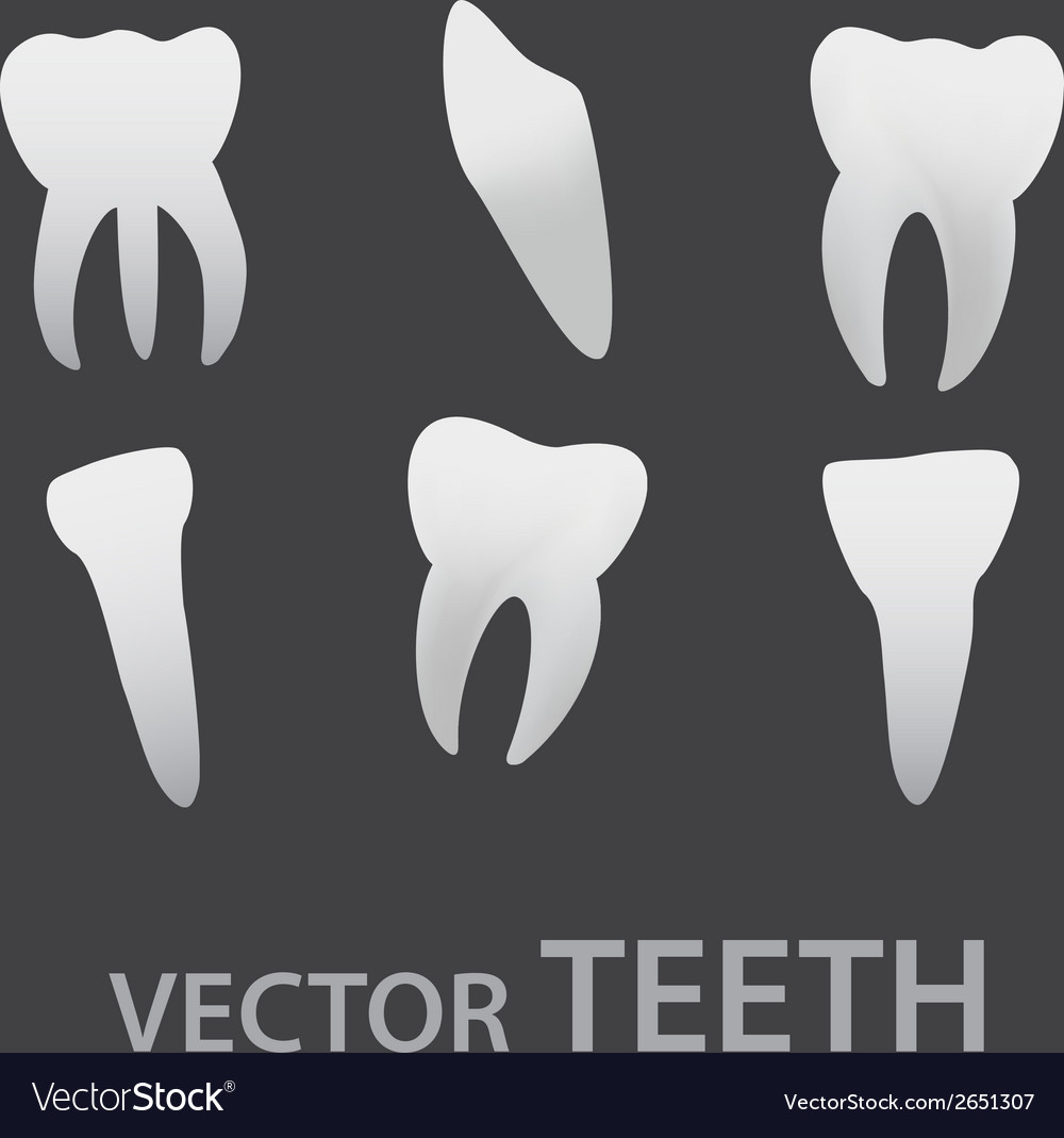 Teeth icons eps10 vector | Price: 1 Credit (USD $1)
