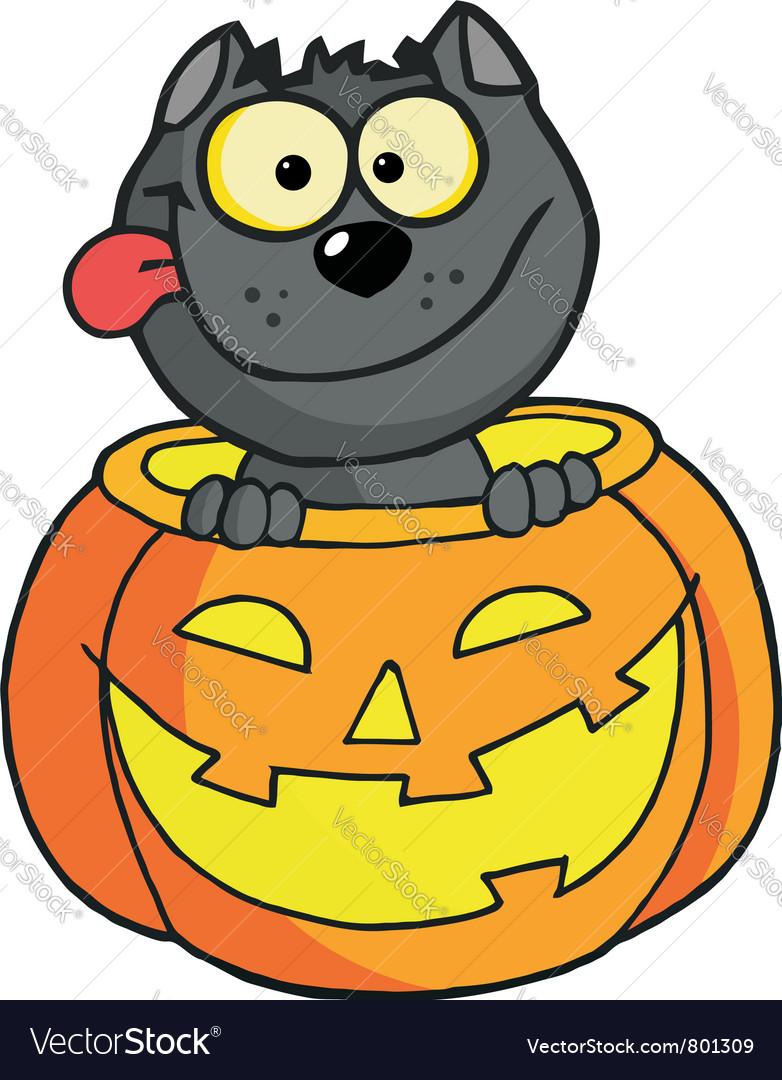 Happy cat in a pumpkin vector | Price: 1 Credit (USD $1)