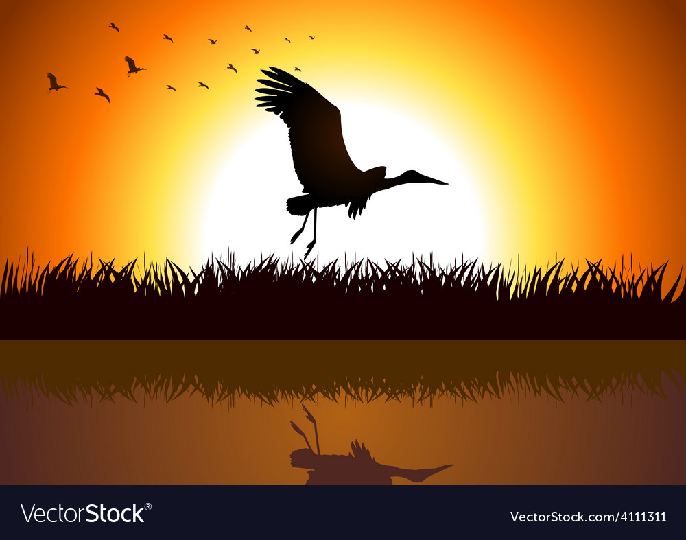 Swamp life vector | Price: 1 Credit (USD $1)