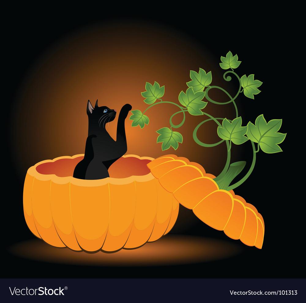 Cat in pumpkin vector | Price: 1 Credit (USD $1)