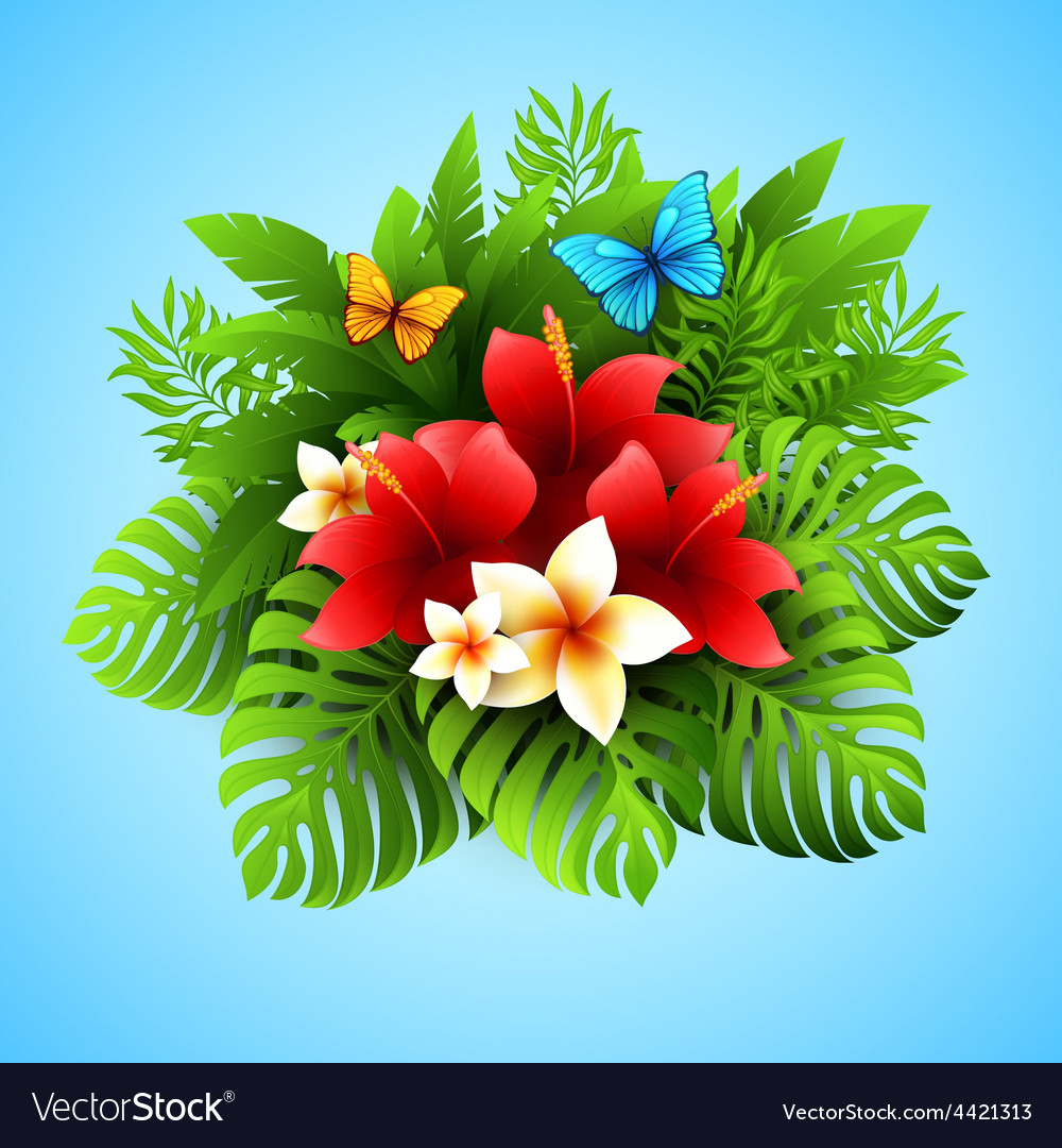 With tropical plants and vector | Price: 3 Credit (USD $3)