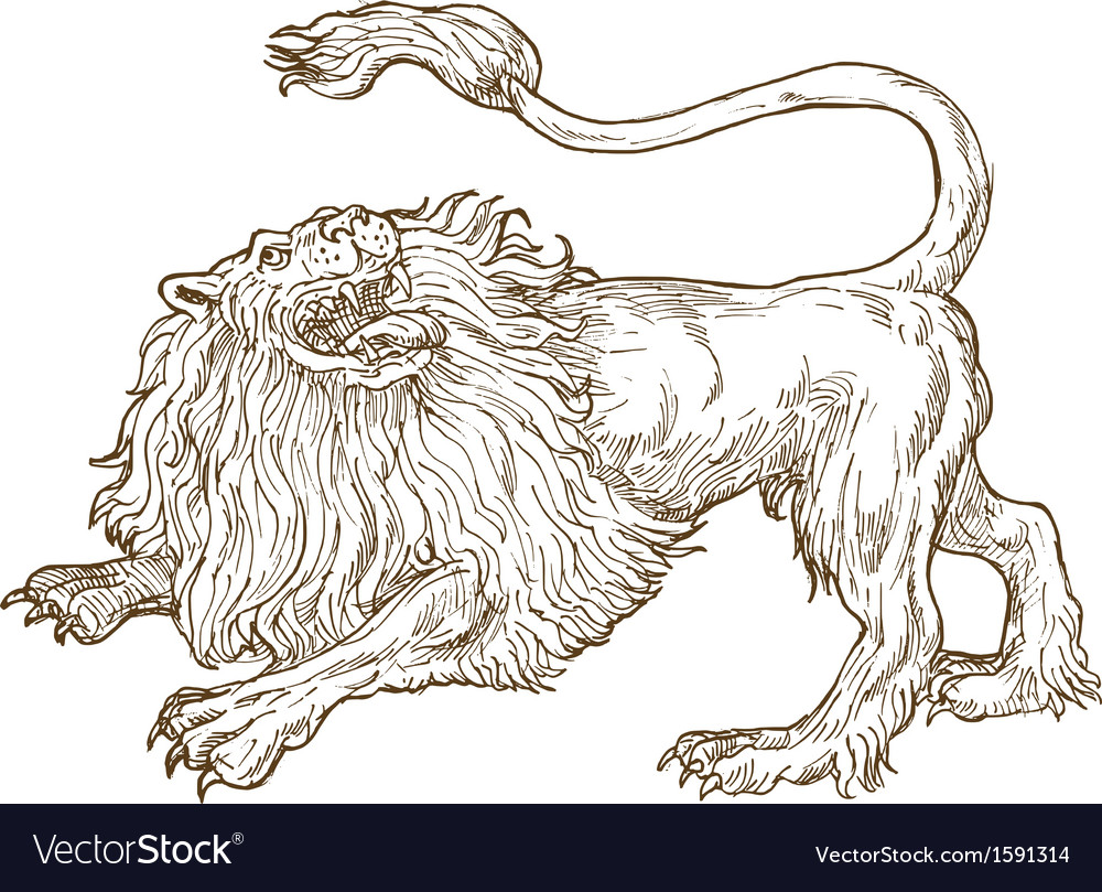 Angry lion roaring looking up viewed from the side vector | Price: 1 Credit (USD $1)
