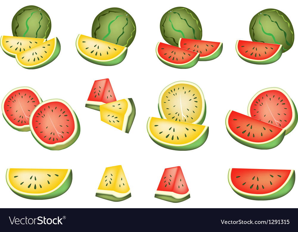 Set of delicious fresh red and yellow watermelons vector | Price: 1 Credit (USD $1)