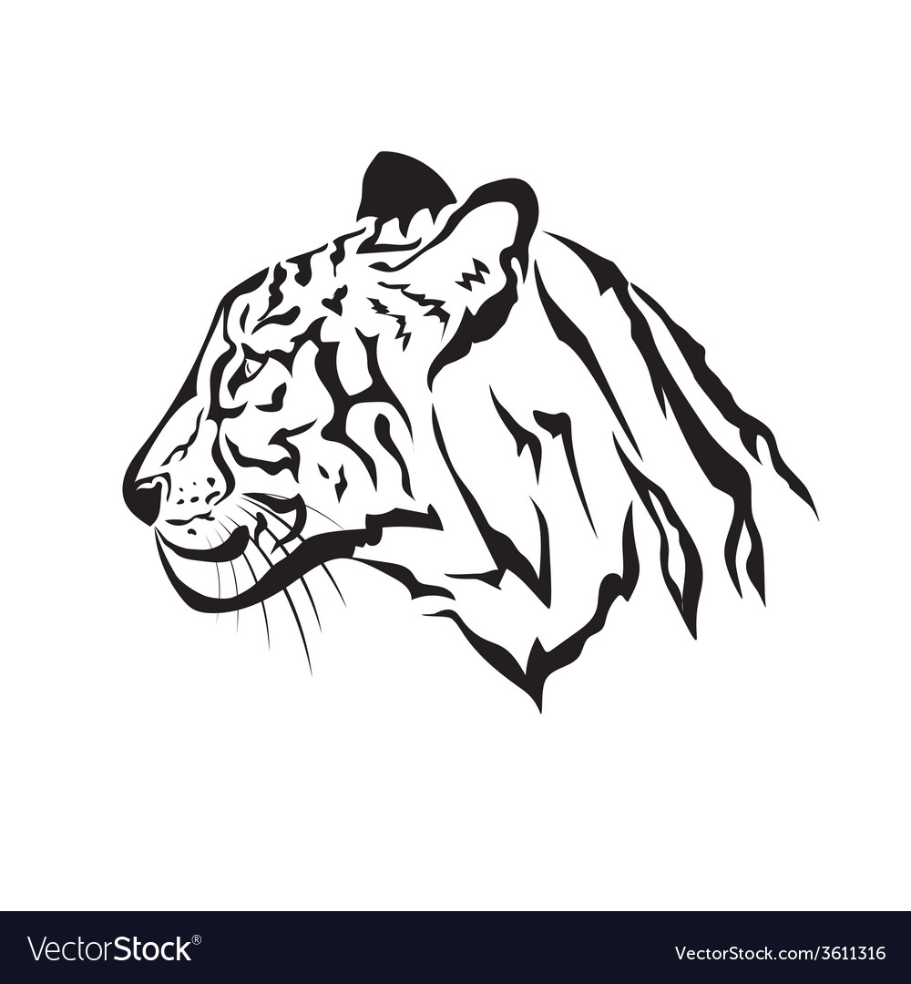 Image of an tiger vector | Price: 1 Credit (USD $1)