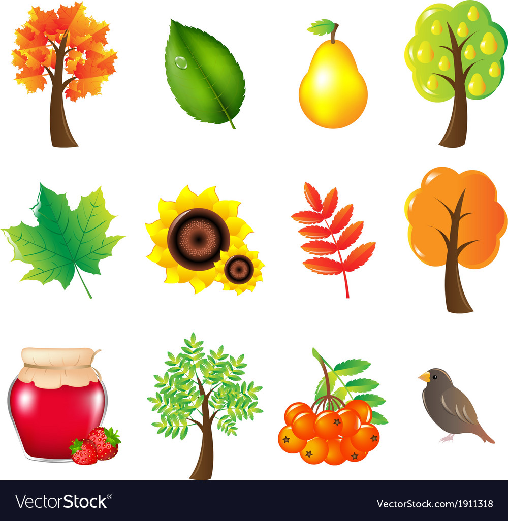 Autumn set vector | Price: 1 Credit (USD $1)