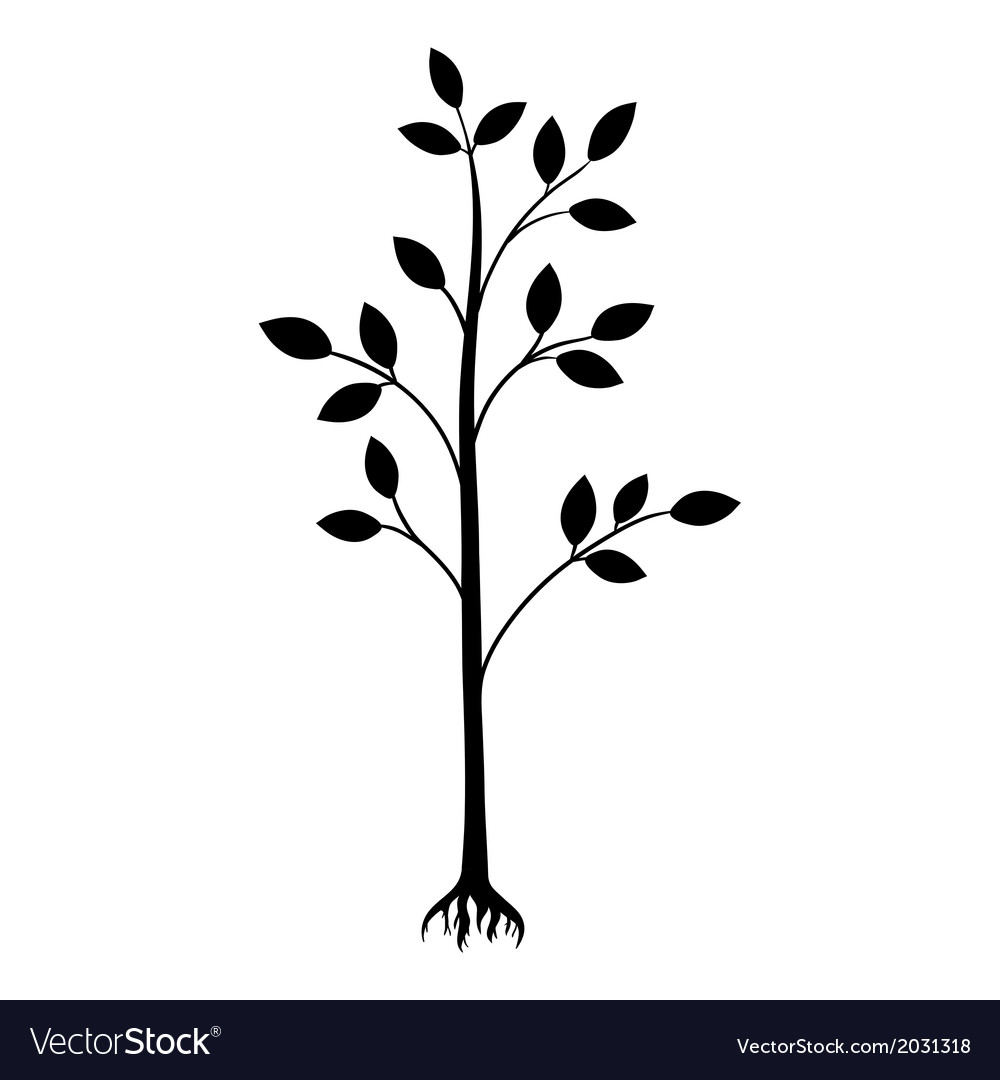Black tree silhouette isolated on white background vector | Price: 1 Credit (USD $1)