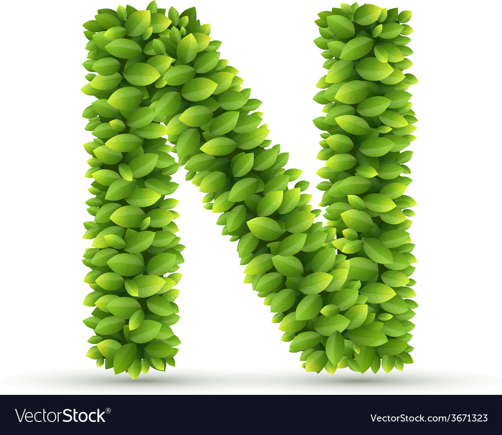 Letter n alphabet of green leaves vector | Price: 1 Credit (USD $1)