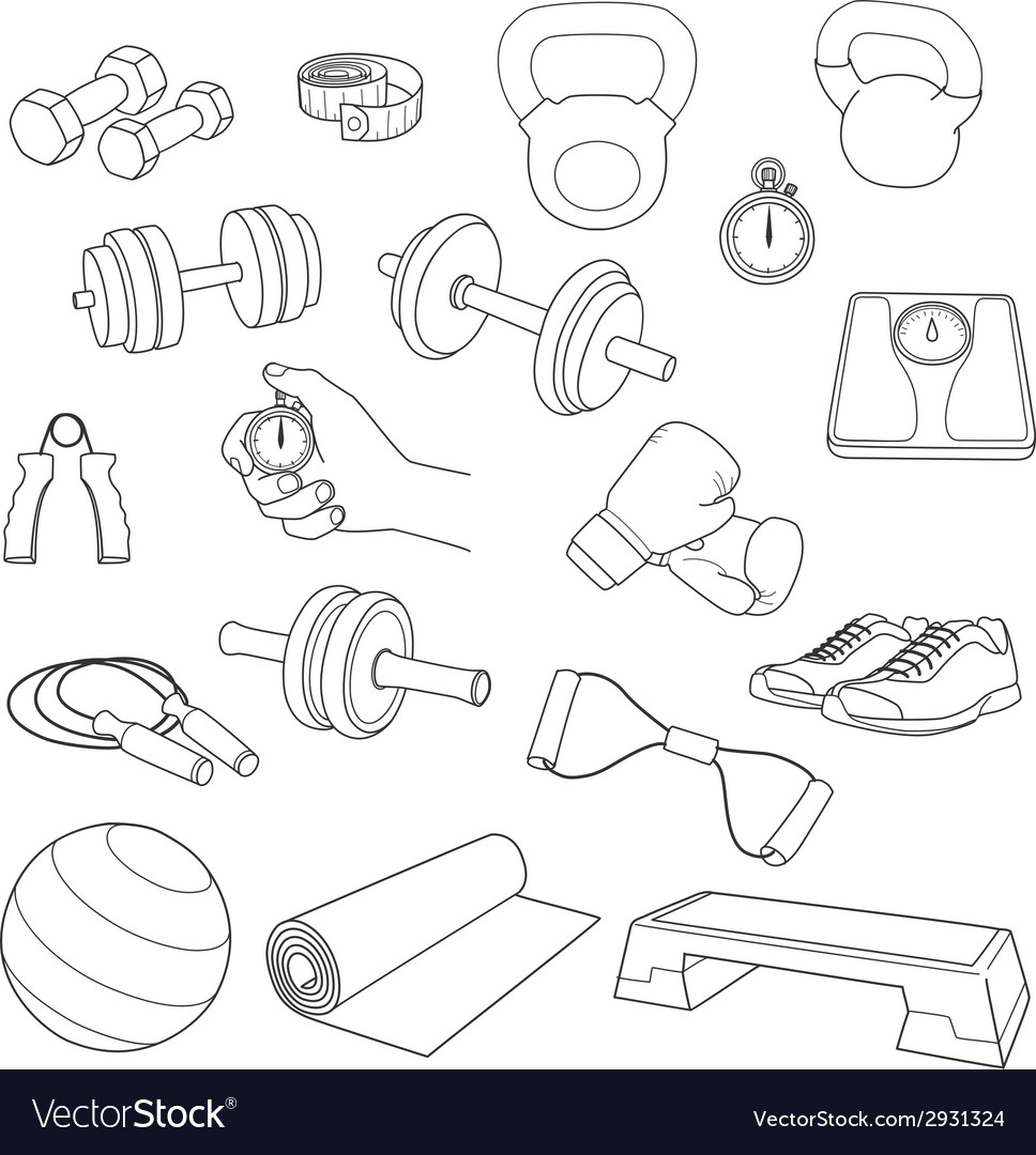 Hand drawn set of fitness accessories dumbbells vector | Price: 1 Credit (USD $1)