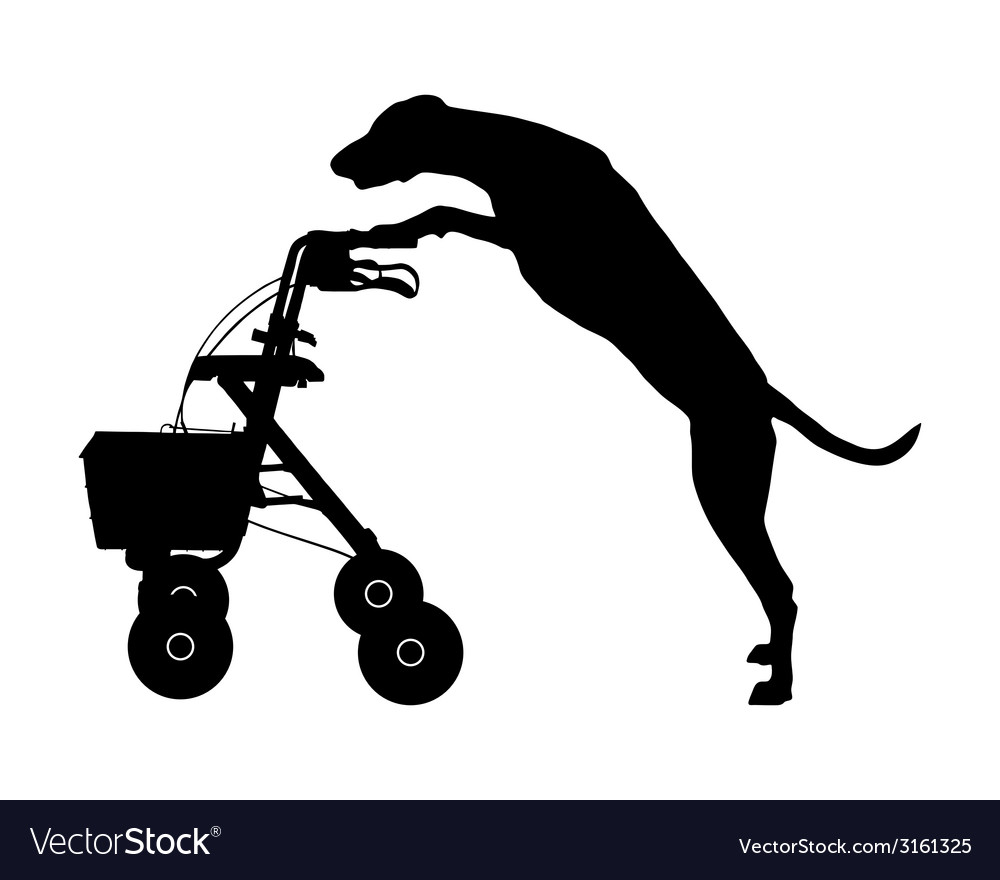 Dog pushes rollator vector | Price: 1 Credit (USD $1)