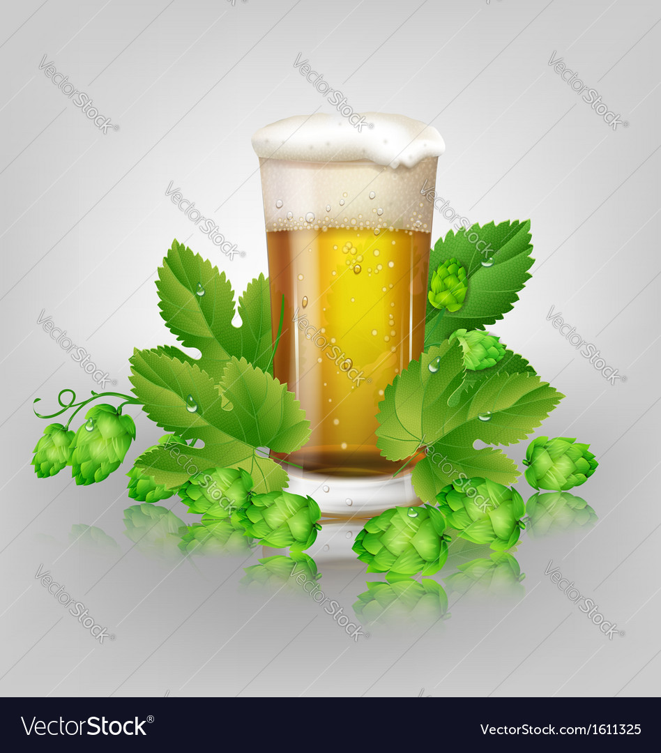 Glass of beer and hops vector | Price: 1 Credit (USD $1)