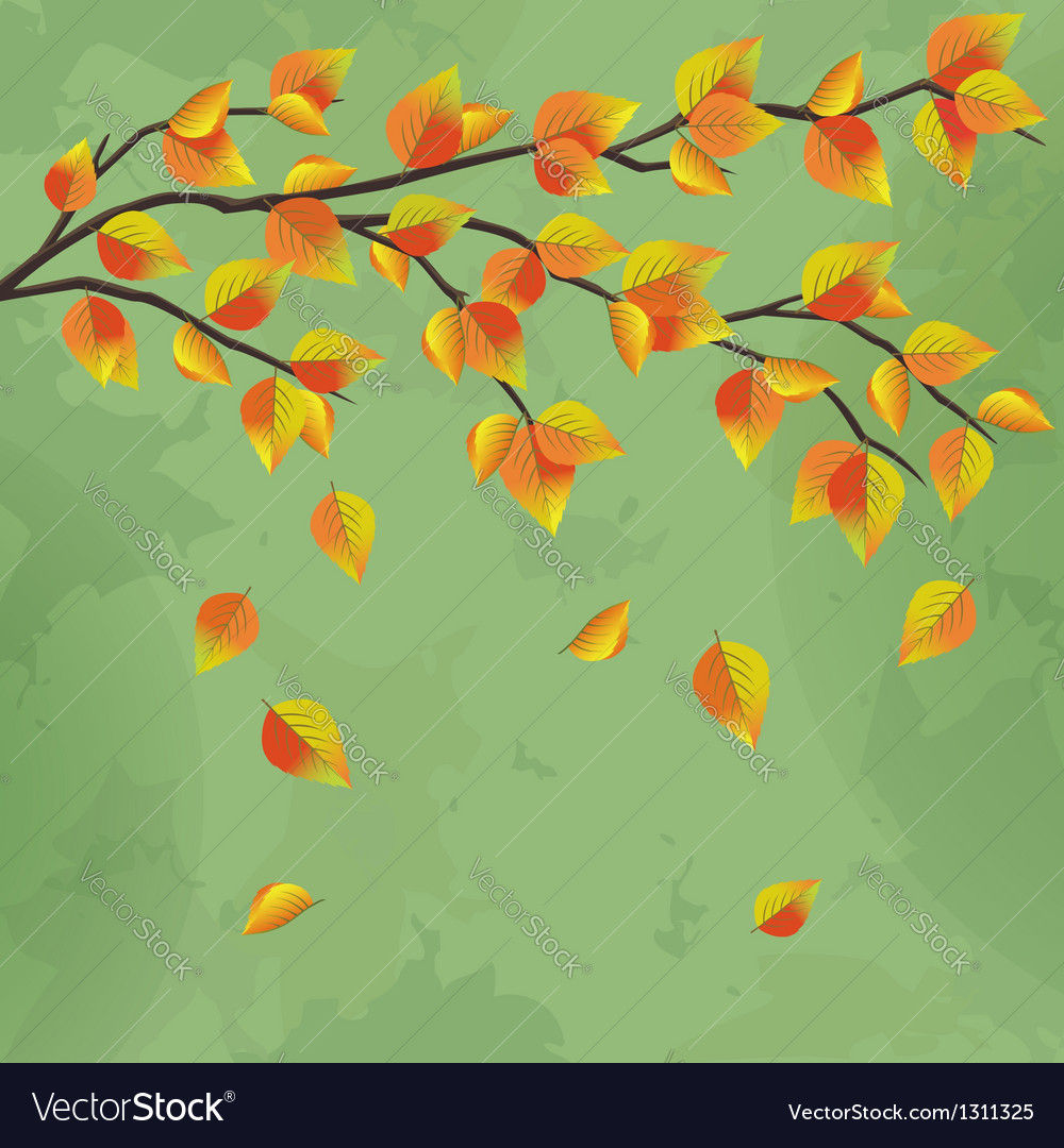 Vintage autumn background with tree branch vector | Price: 1 Credit (USD $1)