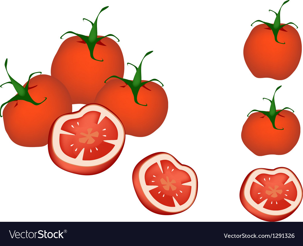 A set of delicious fresh red tomatoes vector | Price: 1 Credit (USD $1)