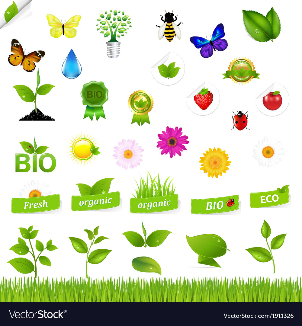 Eco set with nature icons vector | Price: 1 Credit (USD $1)