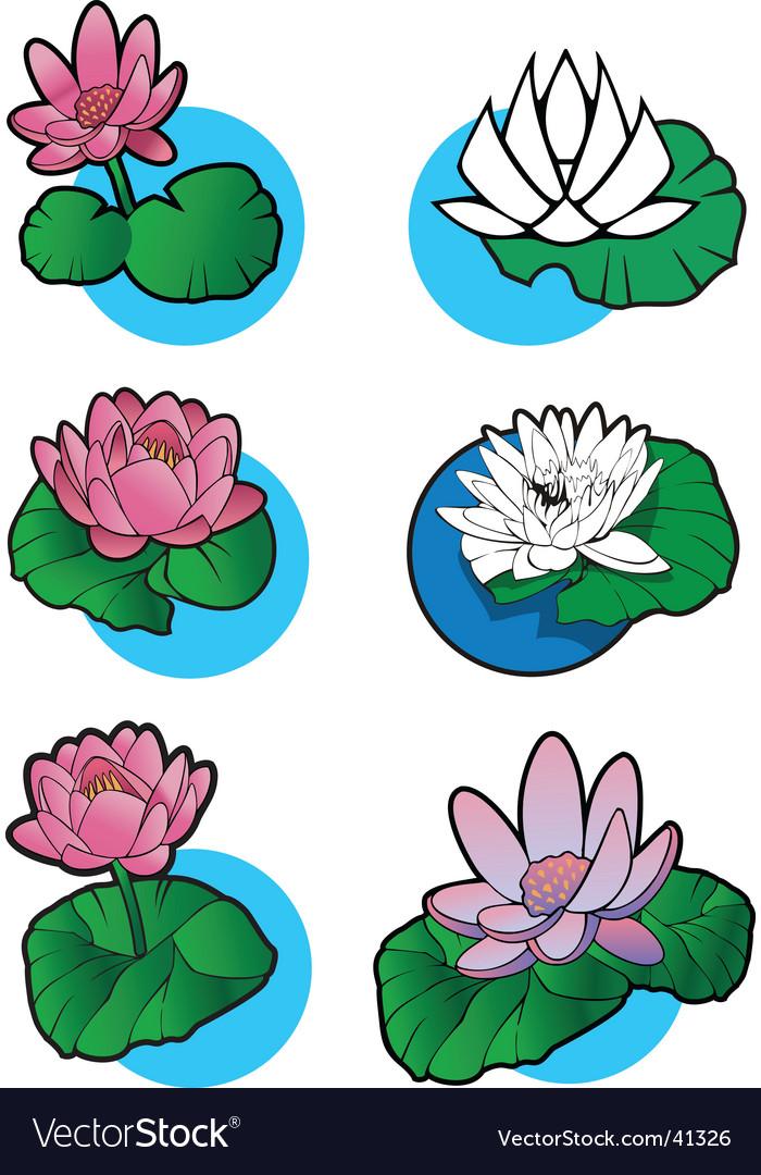 Lotus flower set vector | Price: 1 Credit (USD $1)
