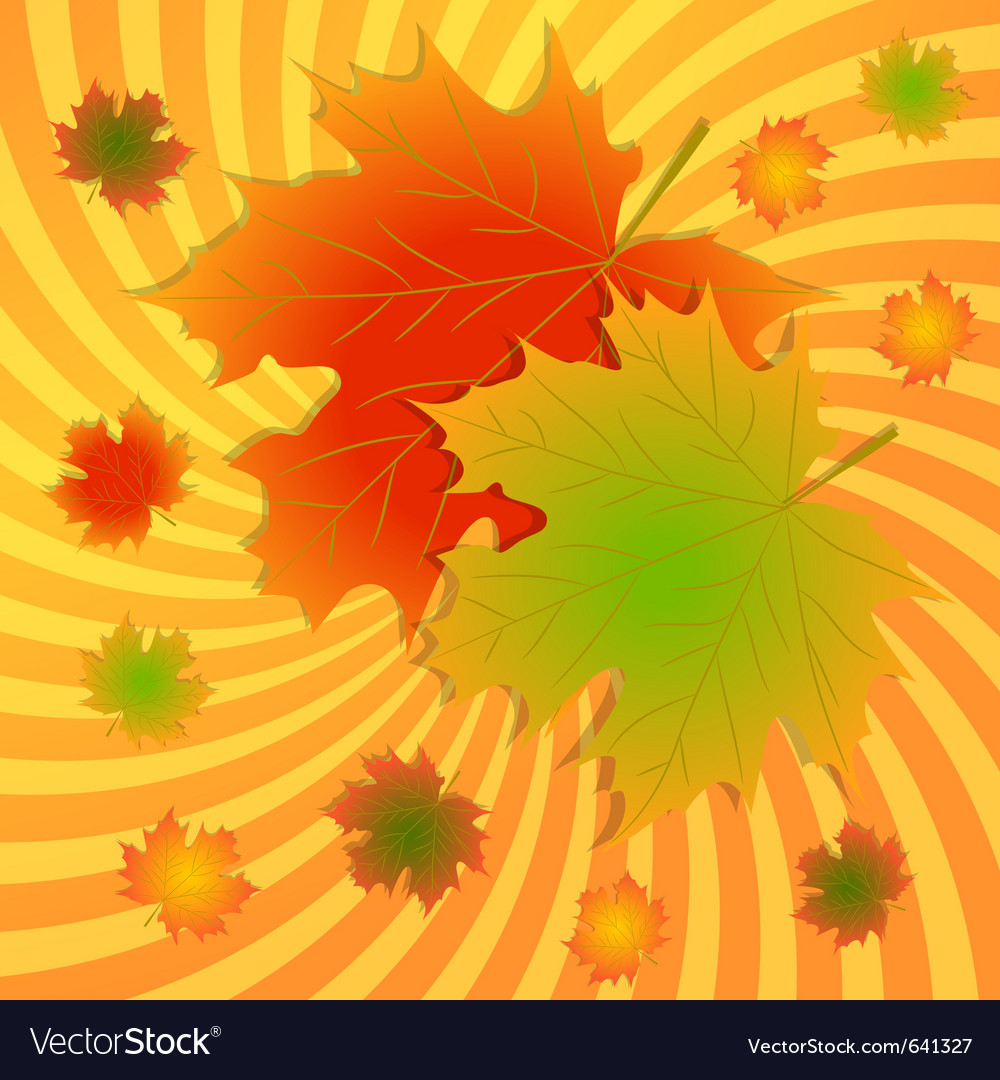 Autumn maple leaves background vector | Price: 1 Credit (USD $1)